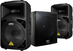 12 Inch Speakers & Subs